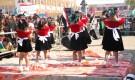 الاحتفاء بمرور العام الثاني على تحرير مدينة الخوخة من الميليشيات الحوثية