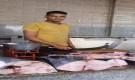 إرتفاع باهظ لأسعار الأسماك اليوم في عدن