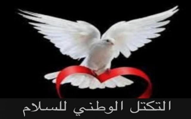 التكتل الوطني للسلام يدين الحادث الإجرامي في مطار عدن